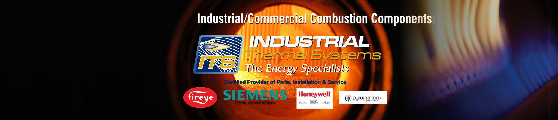 Combustion Parts & Service